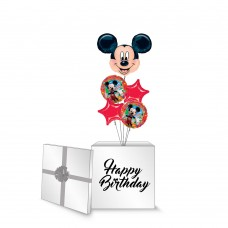 Mickey Mouse Surprise Box
