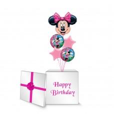 Minnie Mouse Surprise Box