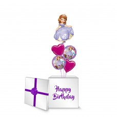 Sofia The First Surprise Box