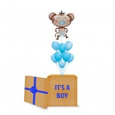 Blue Monkey Surprise Box