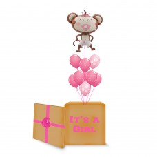 Pink Monkey Surprise Box
