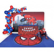 SpiderMan Party 3
